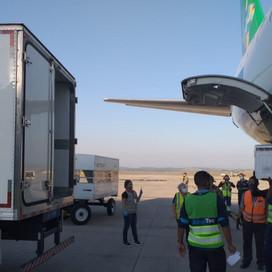 +Coronavac. Aeroporto Internacional de BH recebeu 100.200 doses para a segunda dose de 64 a 67 anos
