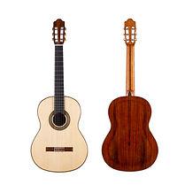 Stanislaw Partyka Double Top Guitar