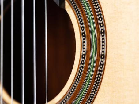 Stanislaw Partyka - DT Concert Guitar