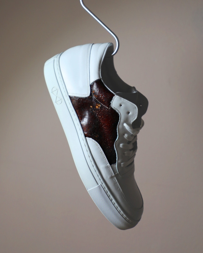 shoe with hook 1.jpg