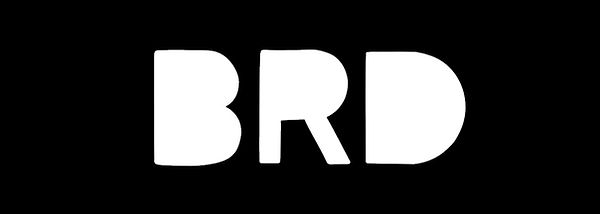 BRD_Wix_Header.jpg
