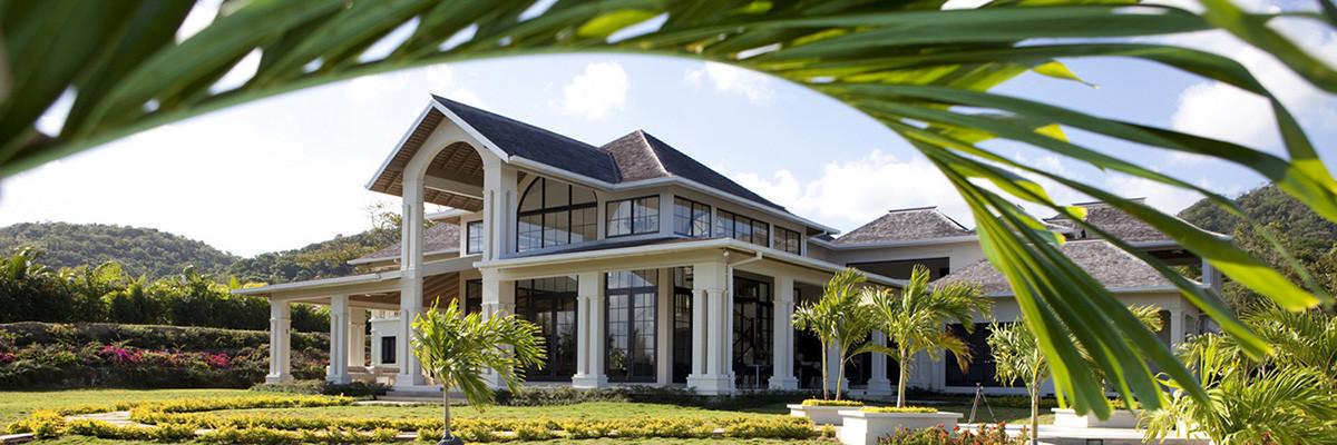 House_PoolPalm-2_8691.jpg
