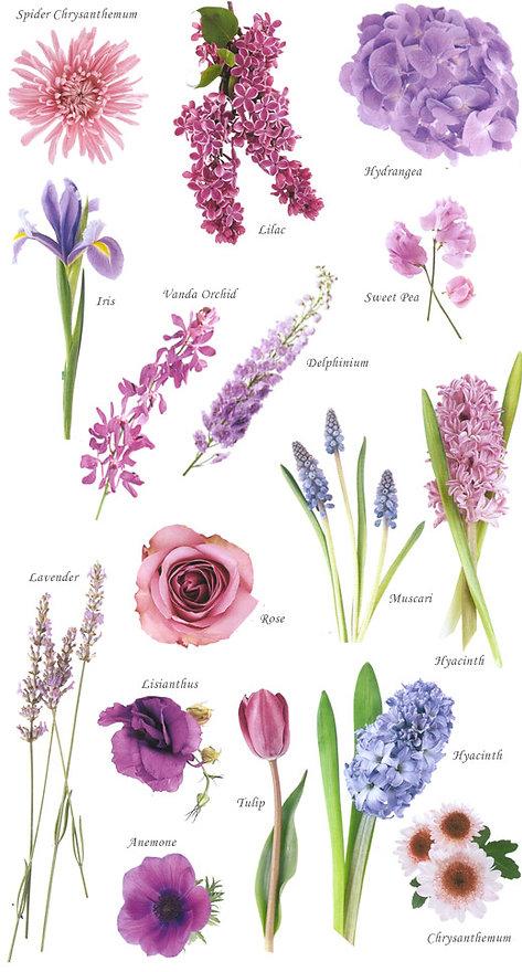 floral-blue.jpg