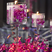 Carolyn + Sub Orchids +florals