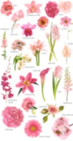 floral-pink.jpg
