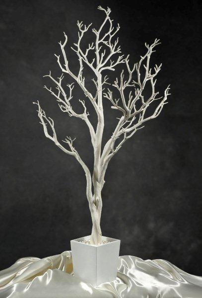 4 foot White Tree in Pot