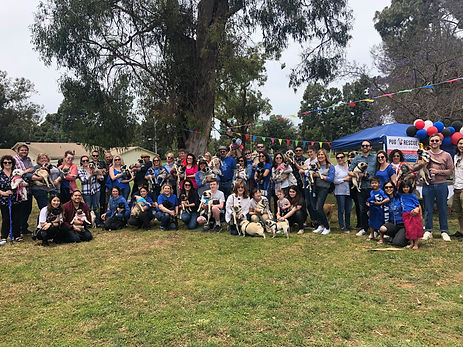 pug-rescue-of-korea-10-year-reunion.jpg