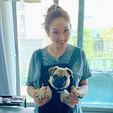 pug-rescue-of-korea-jessica-jun.jpg
