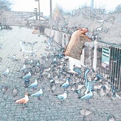 Bird Lady, 2010.jpg