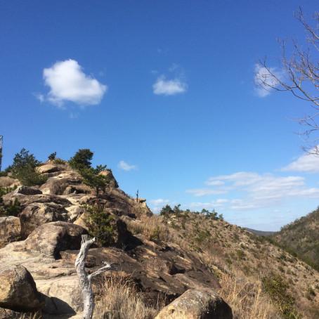 山登り健康法