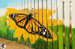 Butterfly on the Border