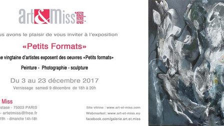 Exposition 'Petits Formats' à la Galerie Art&Miss