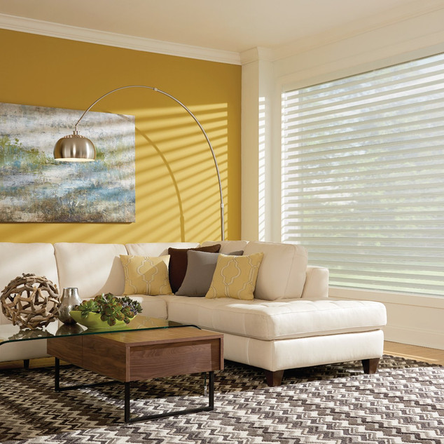 2in Sheer Shades with Continuous-Loop Li