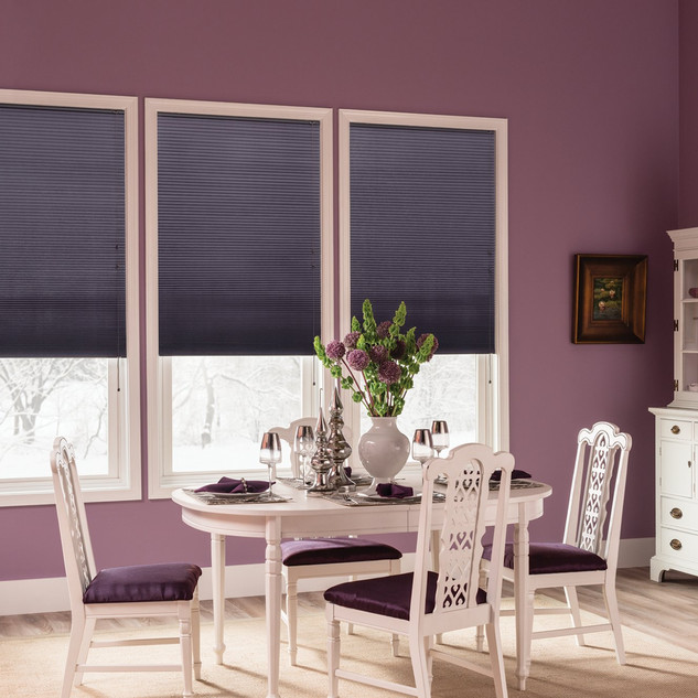 Double Cell Cellular Shades with Cord Li