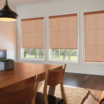 Roller Shades with Cordless Lift
