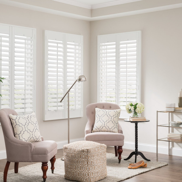 Standard French Door Shutters