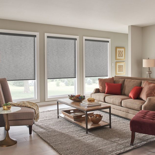 Roller Shades with Motorized Lift