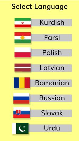 App Language Selection