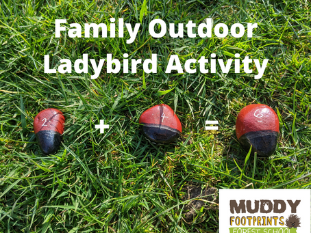 Family Outdoor Ladybird Activity