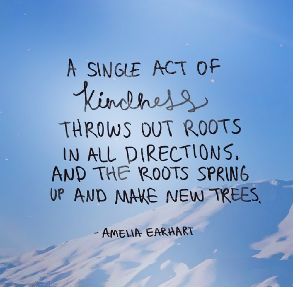 Kindness Amelia Earhart Quote