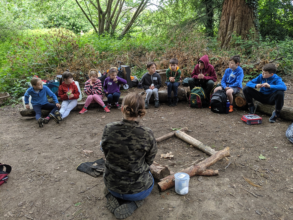 Wildcraft Adventure Learning New Skills