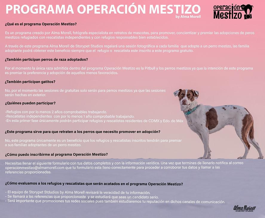 OPERACIÓN_MESTIZO.jpg