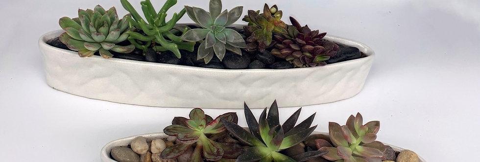 Love Boat - Succulent Planter