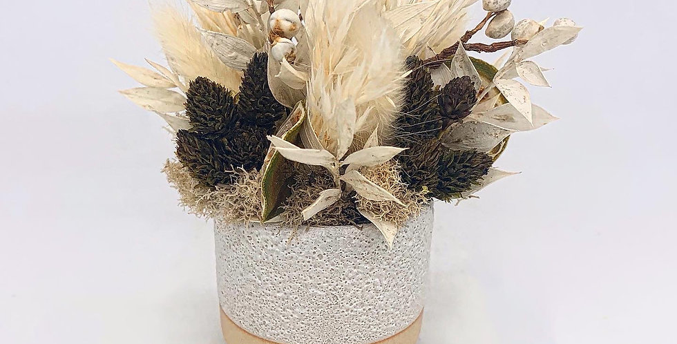 Baby Dried Arrangement–Footed Pot