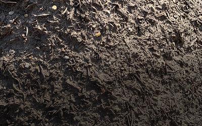 Soil Mix Dark 2.0.jpg