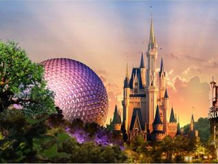 2016 Disney Ticket Raffle