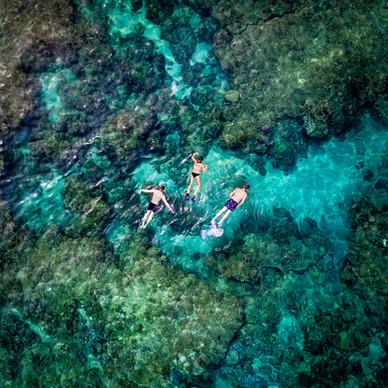 Maui   Kapalua Beach   Snorkelers