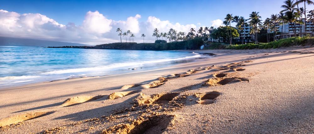 Kapalua Beach | Footprints