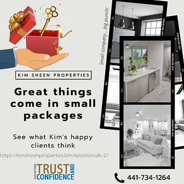 Kim Sheen Properties Bermuda Small Packages Ad