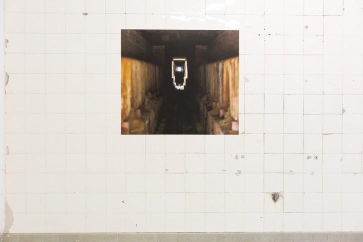 Ausstellungsansicht absorb