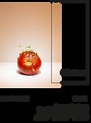 flyer substanz website.png