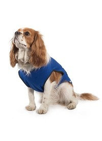 Ancol Dog Cooling Coat