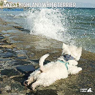 Westhighland Terrier 2020 Calendar