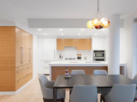 Ngai Penthouse Kitchen