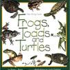 frogs toads.jpg