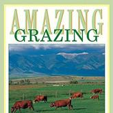 amazing grazing.jpg