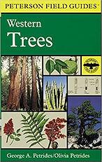 western trees.jpg