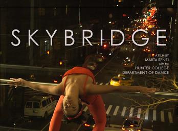 Skybridge 3.1.jpg