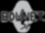 Bownet Sports Logo
