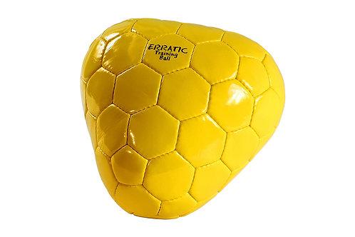 Kiwi Erratic Training Ball