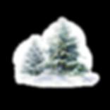 treesss_edited.png