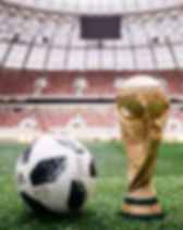 world cup ball and trophi.JPG
