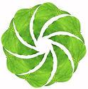 LeafCircle_gruenHellrosa.jpeg