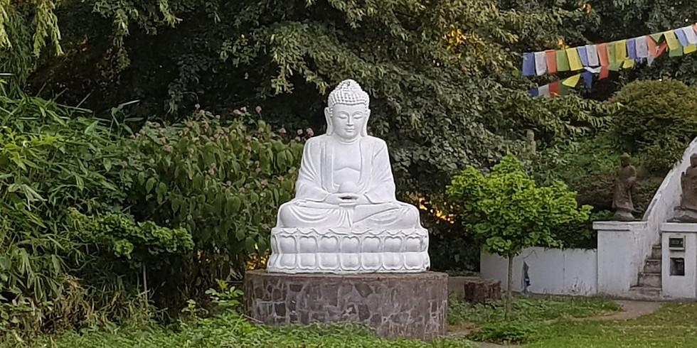 Meditationswochenende - Insight meditation weekend (vipassana)