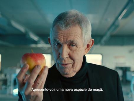 Apple enfrenta processo de 'obsolescência programada do iPhone' em Portugal