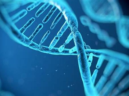 Privacidade em mutação: Prova com material genético descartado é legal mesmo sem consentimento do in